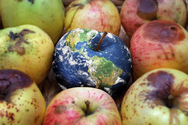 Collage zum klimawandel-konzept