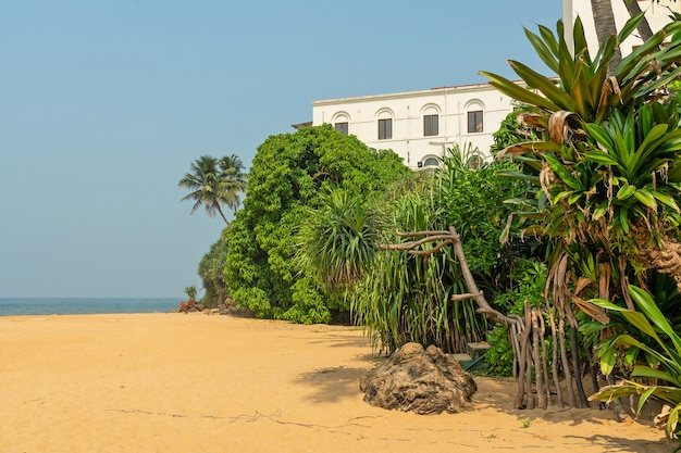 Colombo, sri lanka, ozeanstrand des berühmten historischen hotels mount lavinia