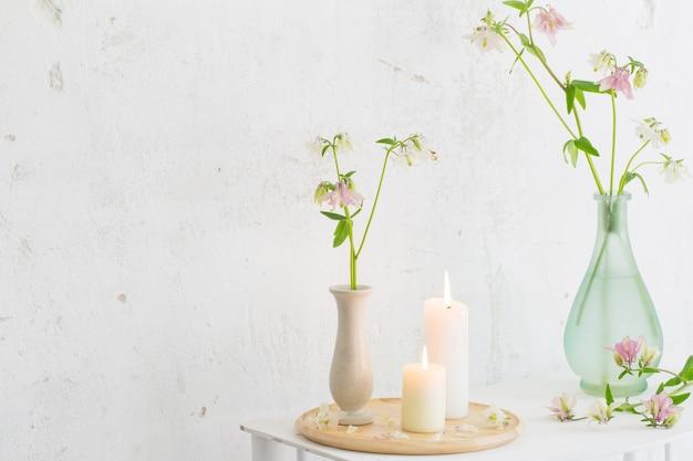 Columbine blumen in der vase auf weißer wand