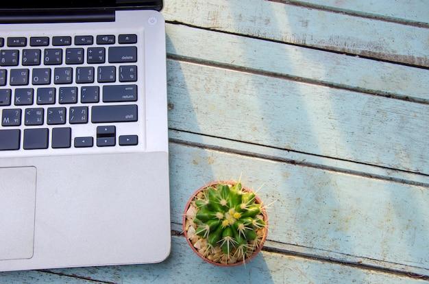 Computer und kaktus