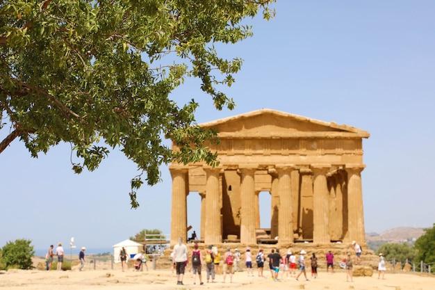 Concordia tempel und baum im tal der tempel von agrigento, sizilien. konzentriere dich auf den baum.