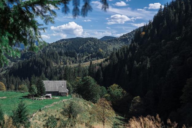 Cotage und die schönen szenischen wälder auf himmelhintergrund in den karpatenbergen, ukraine