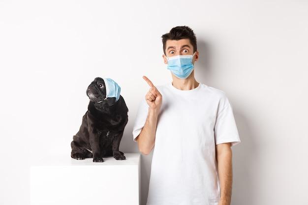 Covid-19, tiere und quarantänekonzept. hundebesitzer und süßer schwarzer mops mit medizinischen masken, mann zeigt und welpe starrt auf die obere linke ecke, weißer hintergrund.