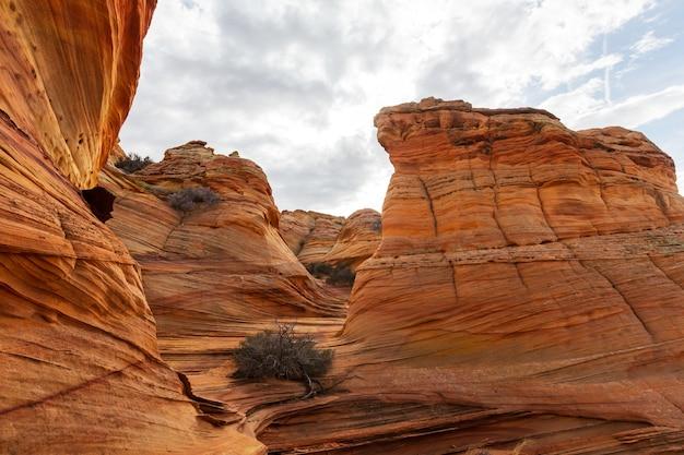 Coyote buttes der vermillion cliffs wilderness area, utah und arizona