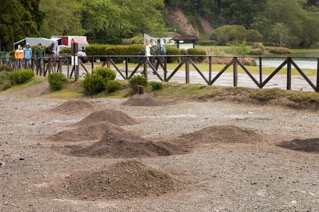 Cozido gräbt