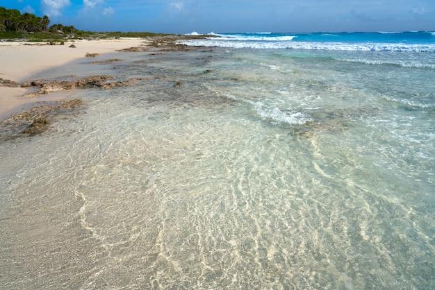 Cozumel insel bush strand in riviera maya