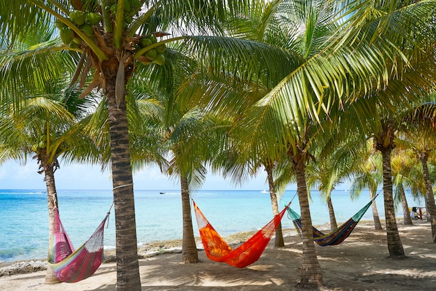 Cozumel-inselstrand-palmenhängematten