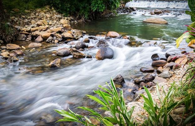 Creek falls und über felsen im wald