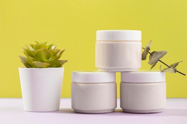Cremebehälter mit topfpflanze