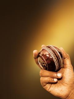 Cricket ball, spielfeld