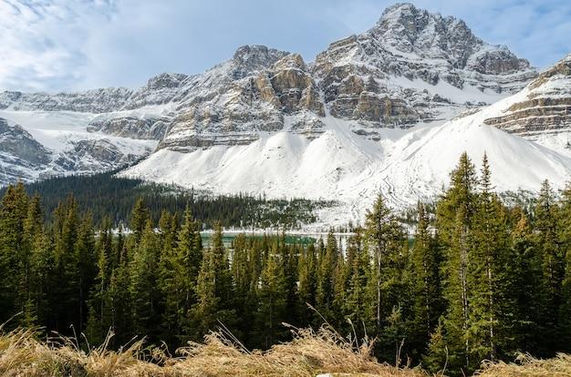 Crowfoot-gletscher in der wintersaison entlang des icefields parkway im banff national park, alberta, kanada Premium Fotos