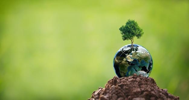 Csr-konzept mit globus, umweltschutzkonzept, baum mit globus vor grünem hintergrund