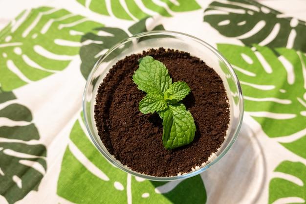 Cupcake der grünen pflanze auf schwarzer schokolade, nahaufnahmebild