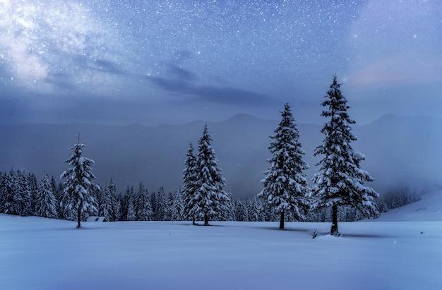 Dairy star trek im winterwald. dramatische und malerische szene. in erwartung des urlaubs. karpaten ukraine.