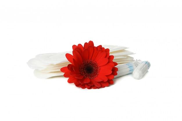 Damenbinden, tampons und gerbera isoliert auf weißer oberfläche