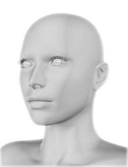 Darstellung von einem weiblichen gesicht 3d