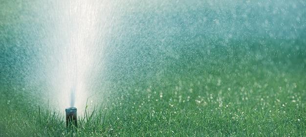 Das automatische bewässerungssystem bewässert rasengras