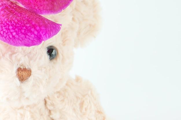 Das gesicht des teddybären hinter der schönen orchideenblume.