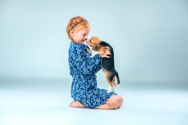Das glückliche mädchen und ein beagle-welpe auf grauer wand
