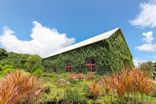 Das große haus, das mit grünpflanze umgeben wurde, nannte birder häuschen, nakhonratchasima, thailand