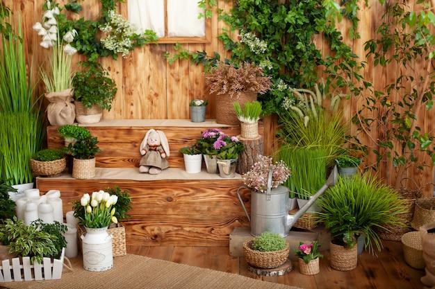 Das innere des frühlingshofs. patio eines holzhauses mit grünen pflanzen in töpfen. gartenarbeit auf stufen des hauses. rustikale terrasse. landhaus veranda im frühjahr dekoration. ostern. anbau von topfpflanzen.
