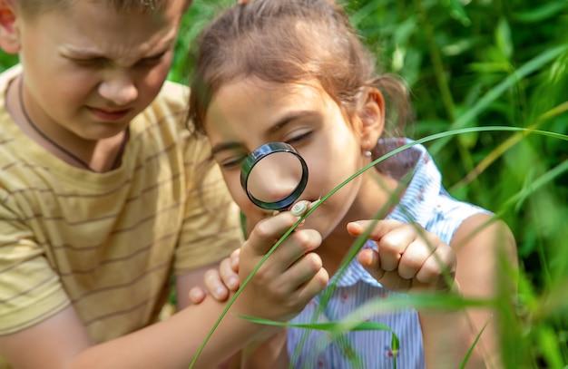Das kind betrachtet die schnecke durch eine lupe. selektiver fokus. natur.
