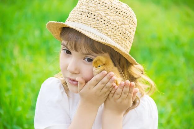 Das kind hält ein huhn in seinen händen. selektiver fokus