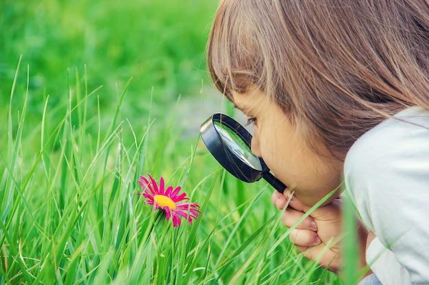 Das kind schaut in eine lupe. erhöhen, ansteigen. selektiver fokus.