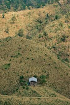 Das konzept der entwaldung besteht aus zerstörten hütten und wäldern.