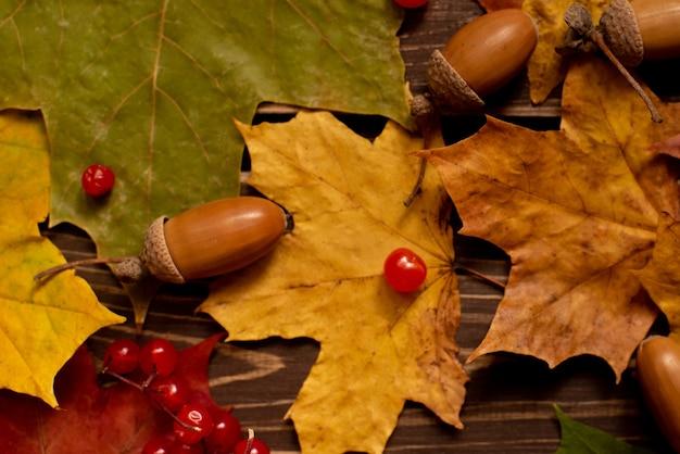 Das konzept der herbsthintergründe. trockene ahorn- und eichelblätter auf holzuntergrund