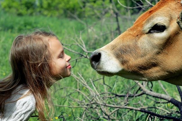 Das lächelnde süße schulmädchen wird eine orangefarbene kuh küssen