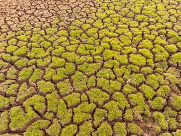 Das land mit trockenem boden und gras bedeckt die globale erwärmung
