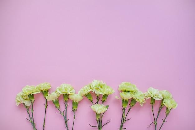 Das layout von zarten rosen und weißen nelken auf rosa hintergrund