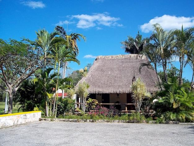 Das lokale restaurant, yucatan, mexiko