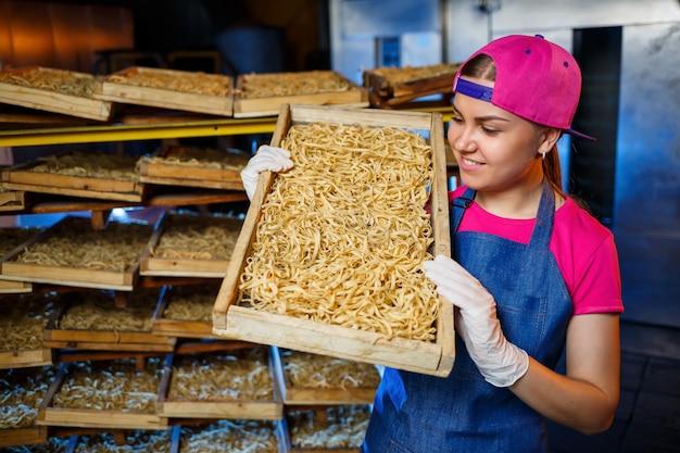 Das mädchen arbeitet an der herstellung von spaghetti. nudeln machen. teigwarenfabrik. bühnenproduktion von nudeln. rohe nudeln. arbeiter mit einer schachtel nudeln.