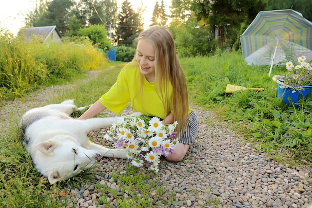 Das mädchen kommuniziert im sommer mit ihrem geliebten hund mit einem strauß gänseblümchen in der hand.