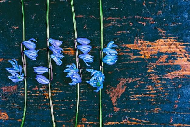 Das muster der blumen glockenblume am hölzernen hintergrund des retro- schmutzes
