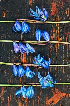 Das muster von blumen glockenblume am hölzernen hintergrund des retro- schmutzes, draufsicht der ebenenlage