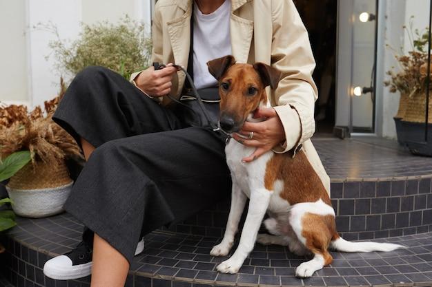 Das porträt des schönen haustierhundes jack russell terrier sitzt auf einer treppe in der nähe seines besitzers und fühlt sich glücklich
