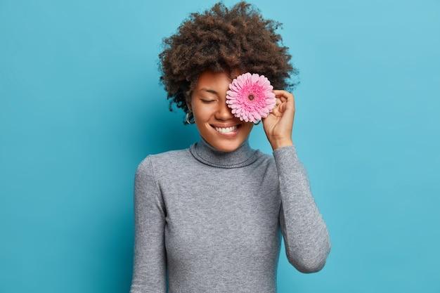 Das porträt einer hübschen afroamerikanischen frau bedeckt das auge mit rosigem gerbera-gänseblümchen, beißt sich auf die lippen, lächelt positiv, mag blumen, trägt einen lässigen rollkragenpullover