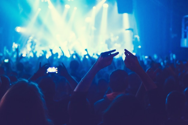 Das publikum sieht das konzert auf der bühne in einem großen konzertclub.