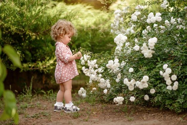 Das schöne kleine mädchen mit einem angemessenen gelockten haar auf weg im park am warmen sommertag