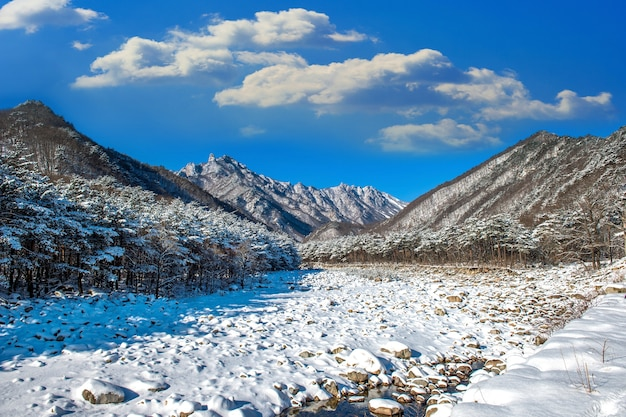 Das seoraksan-gebirge ist im winter in südkorea schneebedeckt.