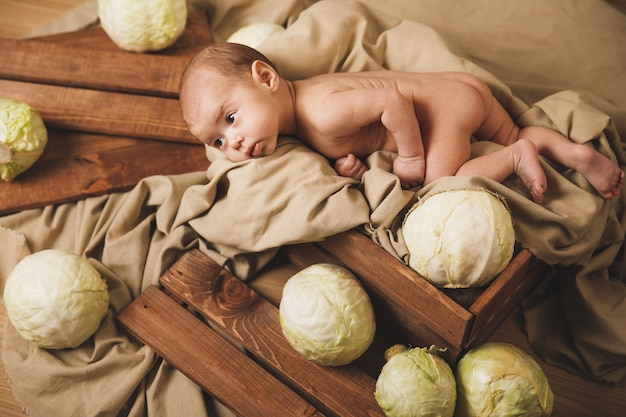 Das süße kleine baby liegt mit vielen kohlköpfen in der schachtel