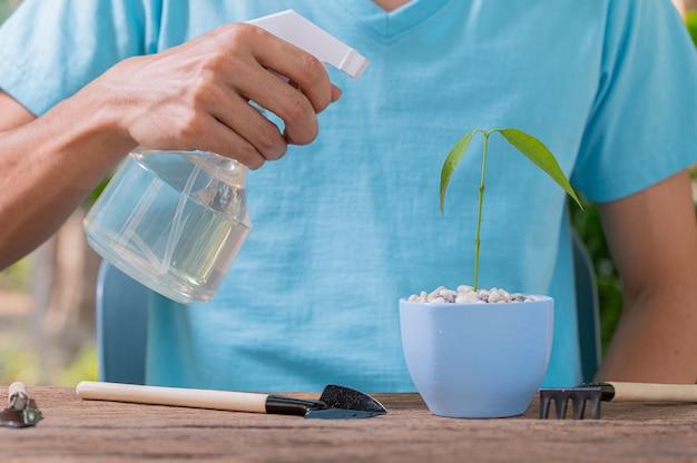 Das wassersprühgerät von pflanzen in töpfen.