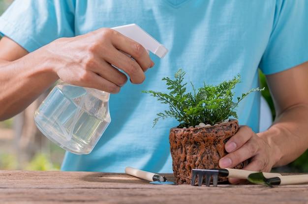 Das wassersprühgerät von pflanzen in töpfen