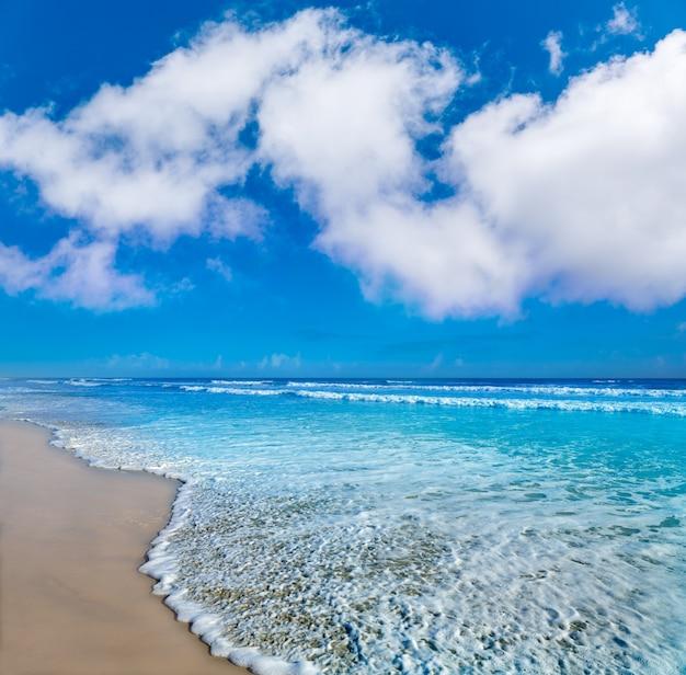 Daytona beach in florida-ufer usa