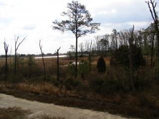 De - geschütztes feuchtgebiet