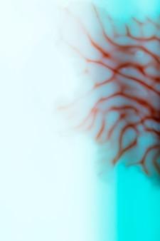 Defocused nahaufnahmeauszug der menschlichen adern