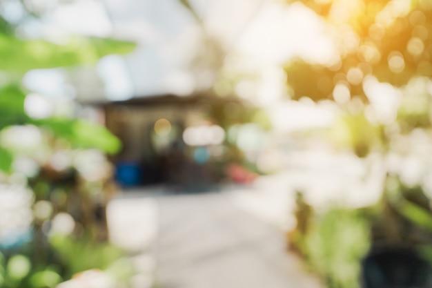 Defokussiertes bokeh und unscharfer hintergrund von gartenbäumen im café mit sonnenlicht.